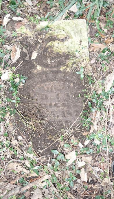 Eliza Jane Massey Carr's tombstone at Cheatham Cemetery near Ava, Illinois.